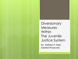 Diversionary Measures Within the Juvenile Justice System
