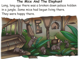 Elephant and mice
