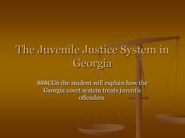 The Juvenile Justice System in Georgia