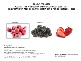 PROJECT PROPOSAL POSSIBILITY OF PRODUCTION AND PROCESSING OF SOFT