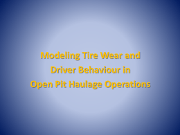 Simulating Drivers and Tire Wear Rates