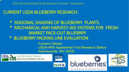Current USDA Blueberry Research