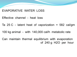 Evaporation - ThermalNet