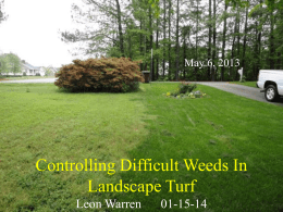 Controlling Difficult Weeds in the Landscapes