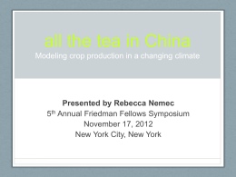 All the tea in China Modeling crop production in