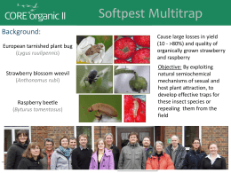 Presentation from Softpest Multitrap
