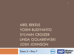 Team 5 WD Dell