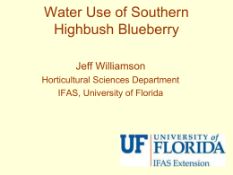 Water Use of Southern Highbush Blueberry (PowerPoint)