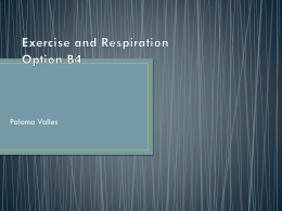Exercise and Respiration Paloma