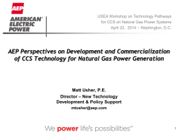 AEP- Matthew Usher - United States Energy Association