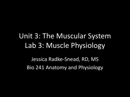 Muscle Physiology - CCS Faculty Websites