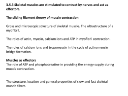 3.5.3 Skeletal muscles are stimulated to contract