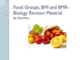 Food Groups, BMI and BMR- Biology Revision Material