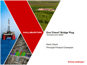 Evo-Trieve® Bridge Plug