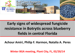 PowerPoint - Florida Blueberry Growers Association