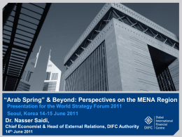 N Saidi The Arab Spring Beyond - Perspectives on MENA Region World