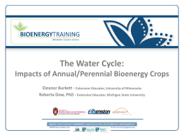 The Water Cycle-- Overview & Impacts of Annual/Perennial