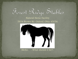 forestridgestables.com