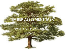 TIMBER ASSESMENT TASK