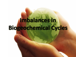 Imbalances in Biogeochemical Cycles
