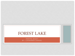 Welcome - Forest Lake