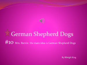 History Of The German Shepherd Dog