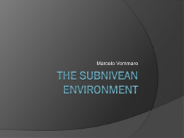 The Subnivean Environment