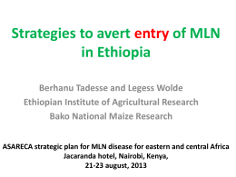 Strategies to avert entry of MLNin Ethiopia