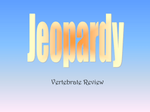 Vertebrate Jeopardy Game
