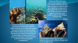 Ocean acidification may cause many negative effects on a variety of