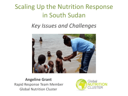 South Sudan - Nutrition Cluster