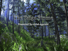 The Taiga Biome Presented By: Anish Agarwal