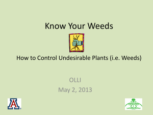 Know Your Weeds