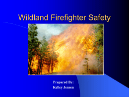 Wildland Safety - tukwilafiretraining.org