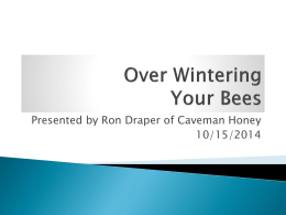 Over Wintering Your Bees