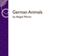 Germany animals