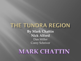The Tundra Region