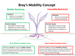 Bray`s Mobility Concept (Tracy Wilson, Alex Cumbie)