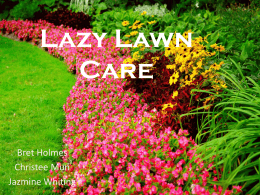 Lazy Lawn Care - Jazmine Whiting