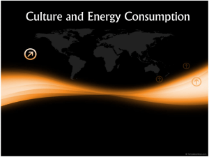 Culture and Energy Consumption
