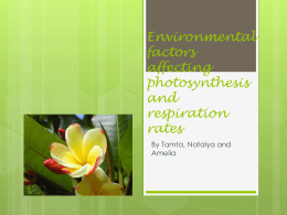 Environmental factors affecting photosynthesis and respiration rates
