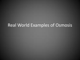 Real World Examples of Osmosis