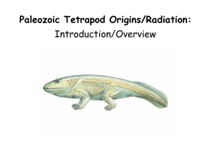 Paleozoic Tetrapod Origins/Radiation: Introduction/Overview