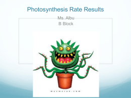 Photosynthesis Data B Block