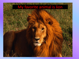 My favorite animal is lion.ppt 3 - Computers