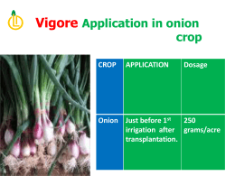CROP APPLICATION Dosage Onion Just before 1 st irrigation after