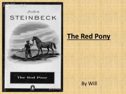 The Red Pony Will