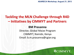 Initiatives by CIMMYT and Partners. (BM Prasanna)