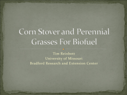 Corn Stover and Perennial Grasses For Biofuel