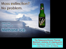 The Palaeocene-Eocene thermal maximum: anatomy of a tipping point